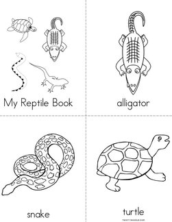 My Reptile Book