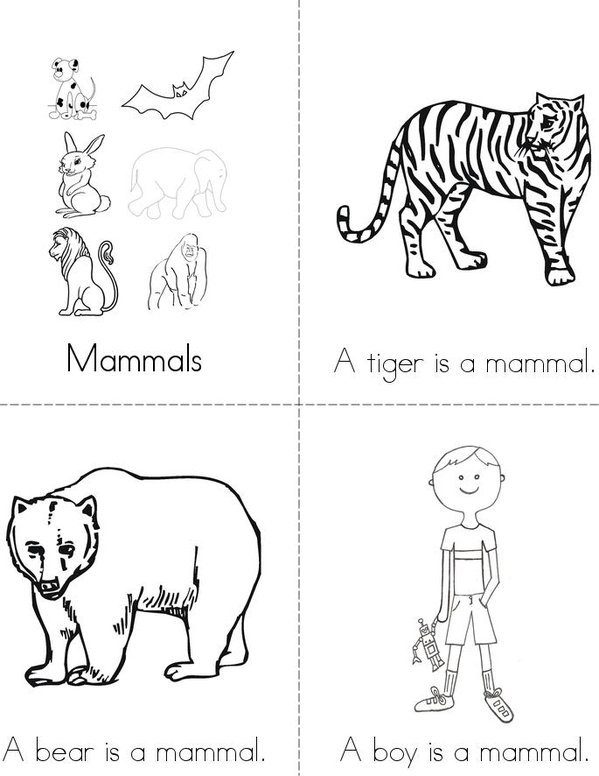 coloring pages animal classification activities - photo#6