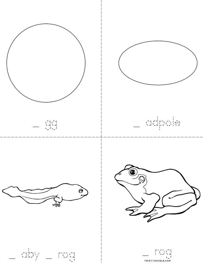 Frog Life Cycle Book - Twisty Noodle