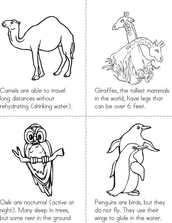 Animal Facts Mini Book - Sheet 1