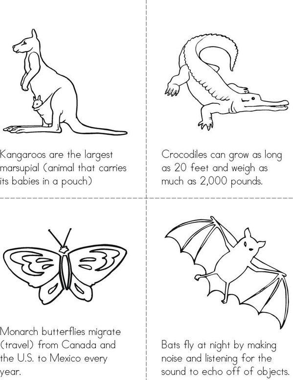 Animal Facts Mini Book - Sheet 2