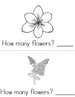 How many flowers? Book