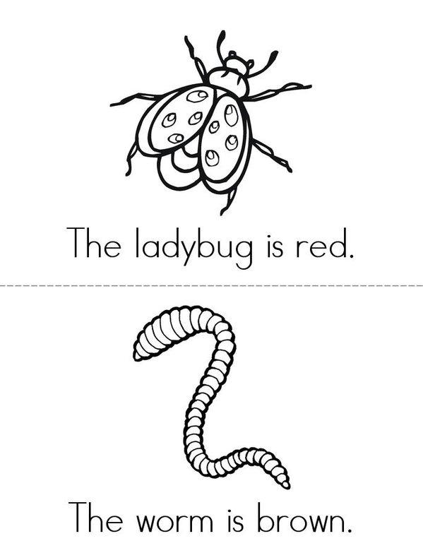 My Bug Book Mini Book - Sheet 3