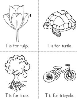 T is for Tulip Book