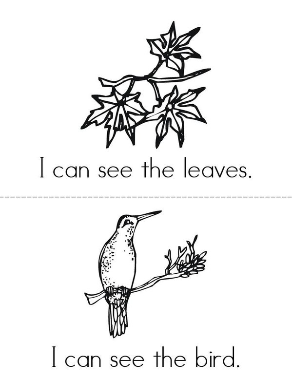 I Can See Nature Mini Book - Sheet 2