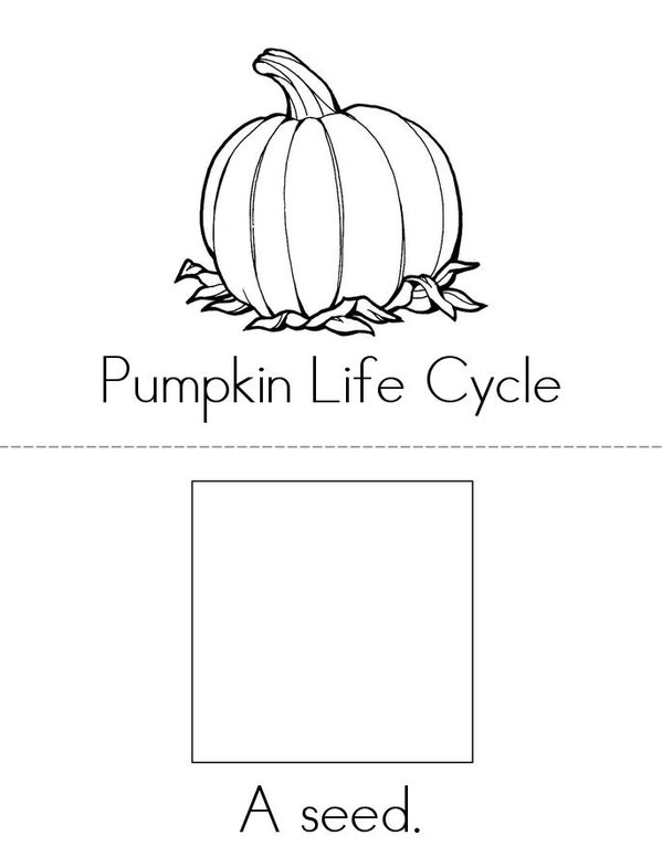 photo relating to Life Cycle of a Pumpkin Printable titled Pumpkin Everyday living Cycle Ebook - Twisty Noodle