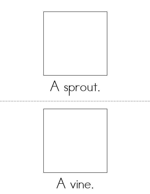 Pumpkin Life Cycle Mini Book - Sheet 2