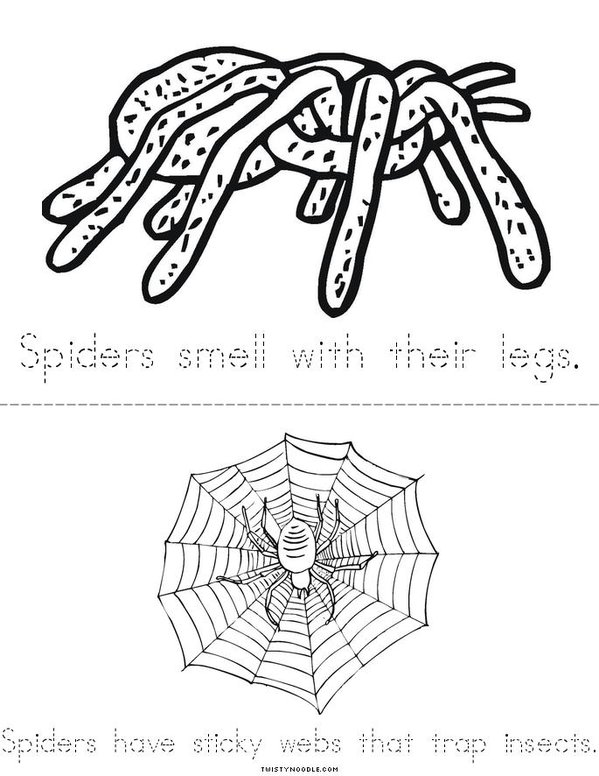 My Spider Book Mini Book - Sheet 2