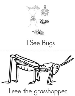 I See Bugs Book