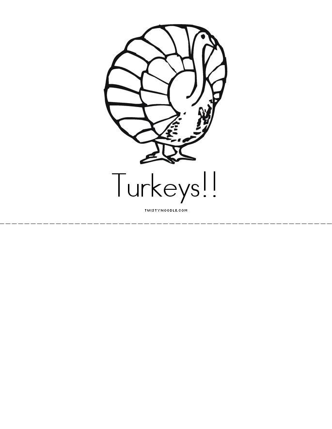Turkeys Book - Twisty Noodle