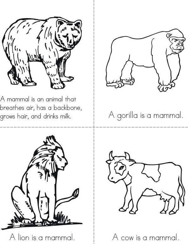 What is a mammal? Mini Book - Sheet 1