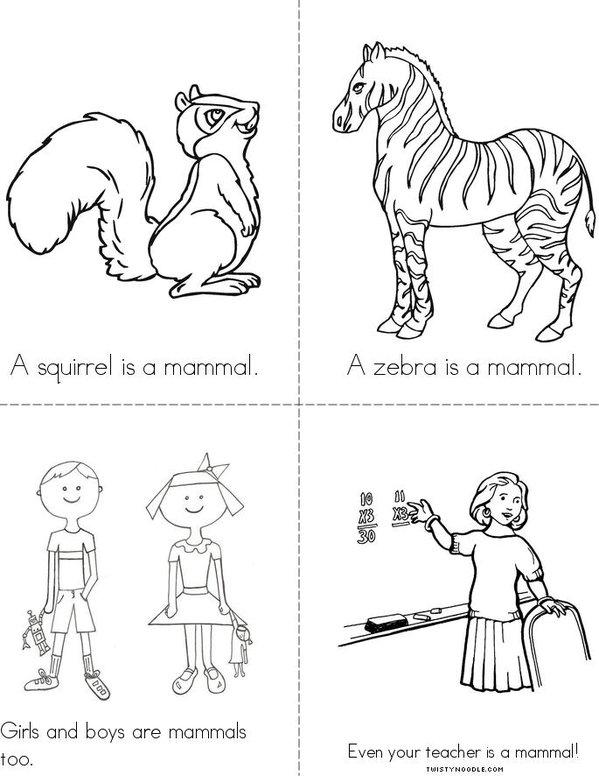 What is a mammal? Mini Book - Sheet 2
