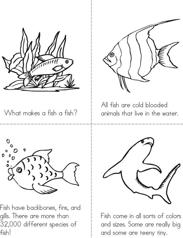 What Makes A Fish A Fish? Mini Book - Sheet 1