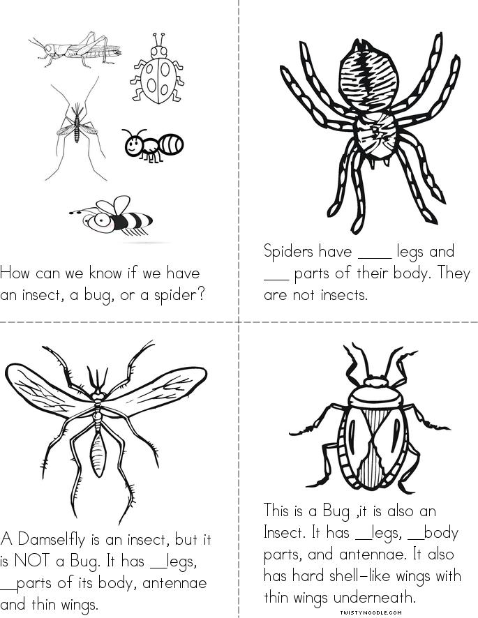 Insects, Bugs, and Spiders Book - Twisty Noodle