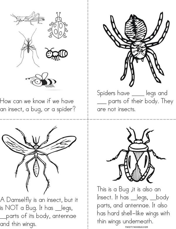 Insects Bugs And Spiders Book