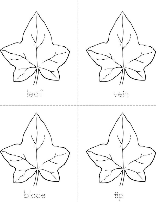Parts of the Leaf Mini Book - Sheet 1
