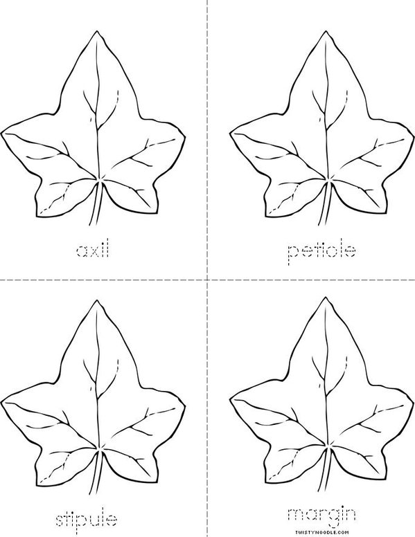 Parts of the Leaf Mini Book - Sheet 2