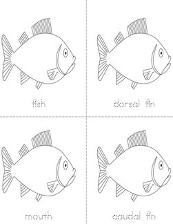 Parts of the Fish Book