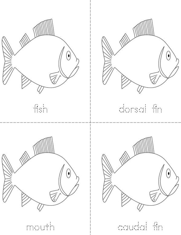 Parts of the Fish Mini Book - Sheet 1