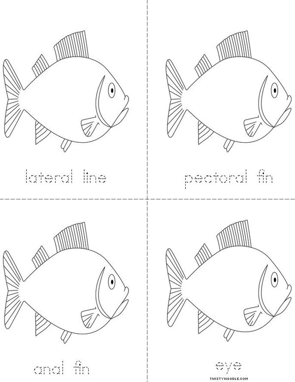 Parts of the Fish Mini Book - Sheet 2