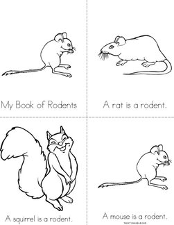 My Book of Rodents