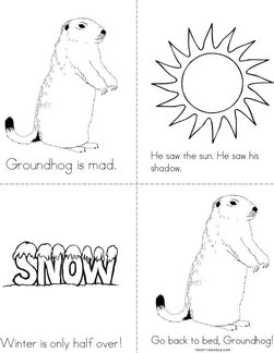 Grumpy Groundhog Book