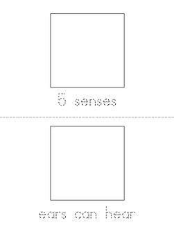 5 senses Book