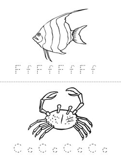 Sea Life Adventure Book