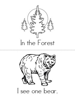 In the Forest Book