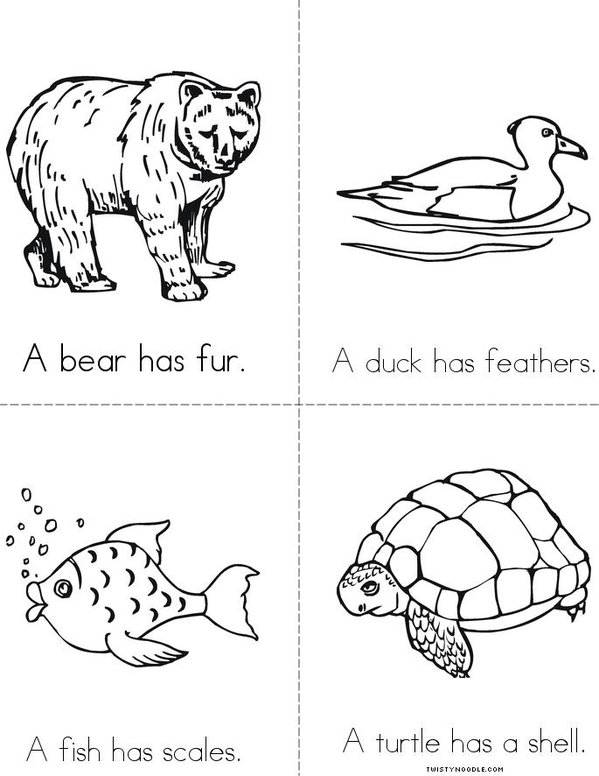Fur, Feathers, Scales and Shells Book - Twisty Noodle Q Is For Coloring Page