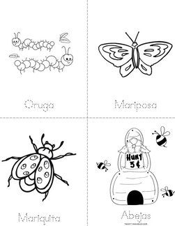 Insects (Spanish) Book