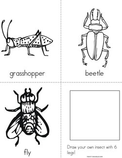 My Insect Book
