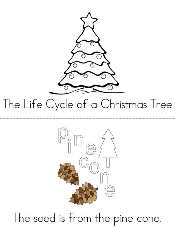 The Life Cycle of a Christmas Tree Mini Book - Sheet 1