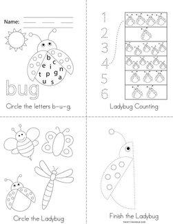 Ladybug Activity Book