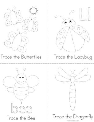 Insect Tracing Book