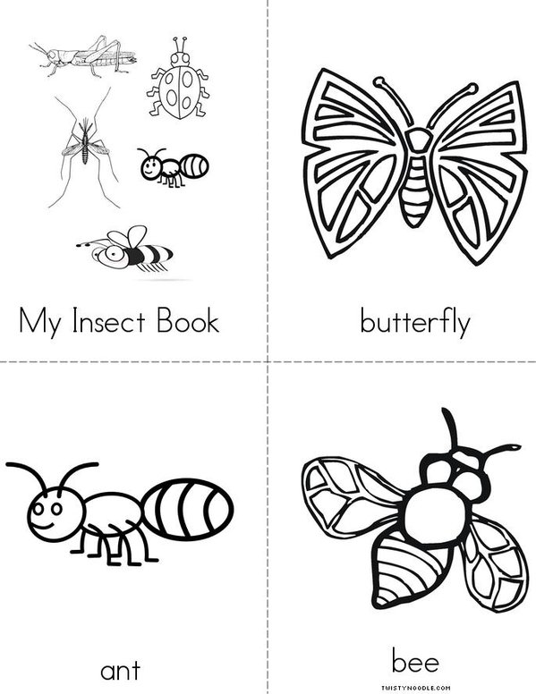 My Insect Book Mini Book