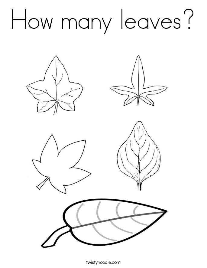 How many leaves Coloring Page Twisty Noodle
