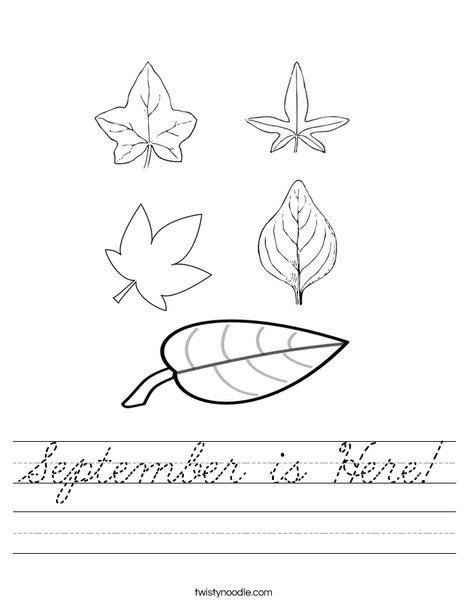 5 Leaves Worksheet