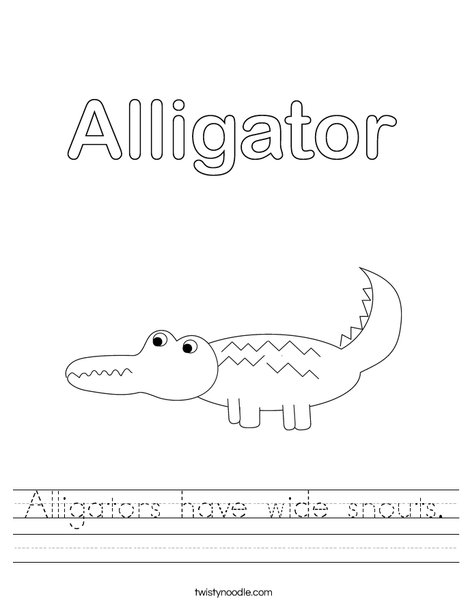 Alligator Worksheet