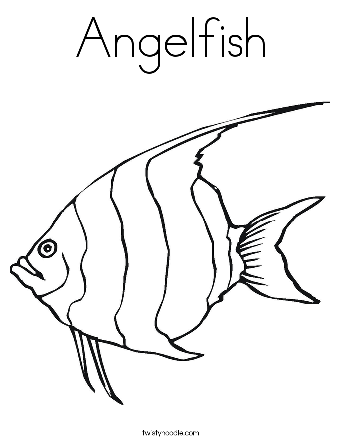 Angel fish drawings - photo#22