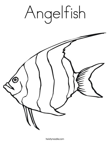 Superb Angelfish Coloring Page