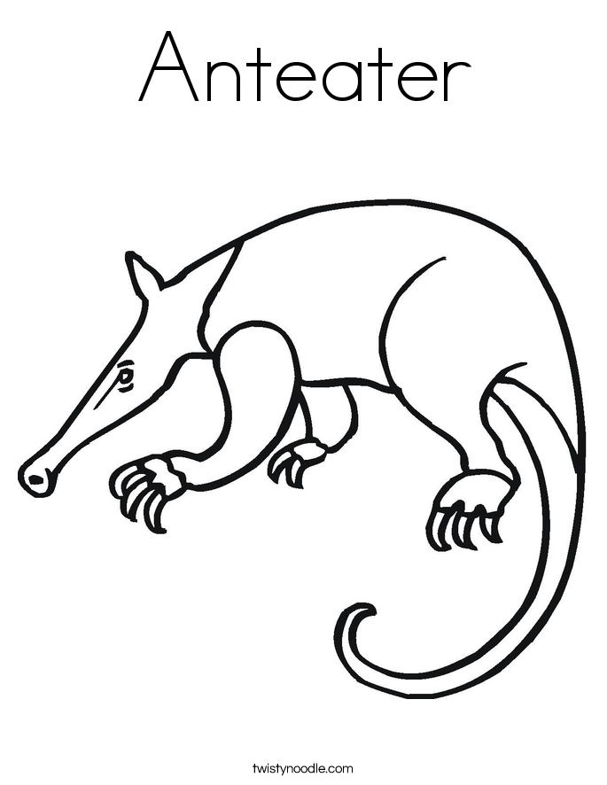 Anteater Coloring Page Twisty Noodle