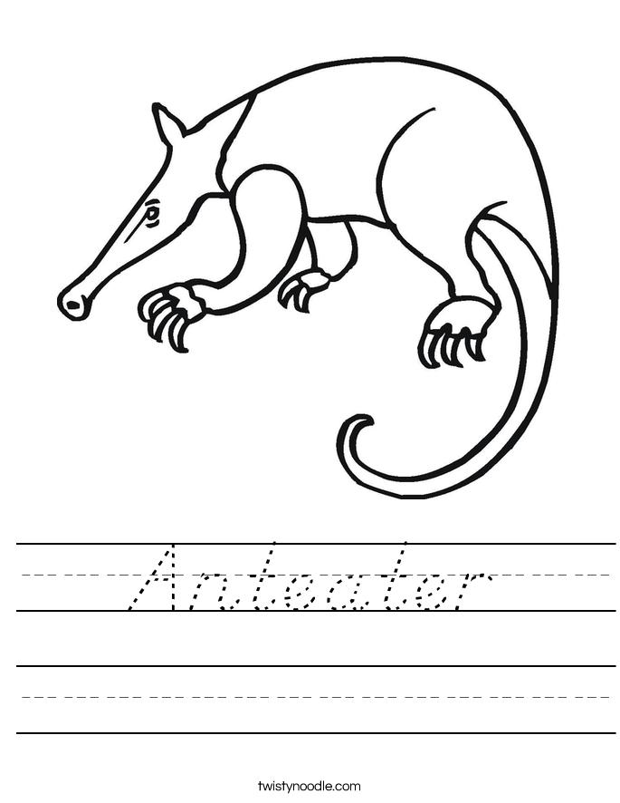Anteater Worksheet