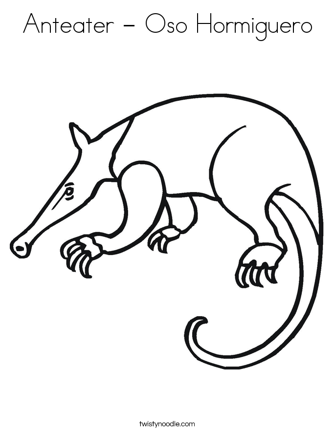 Anteater - Oso Hormiguero Coloring Page