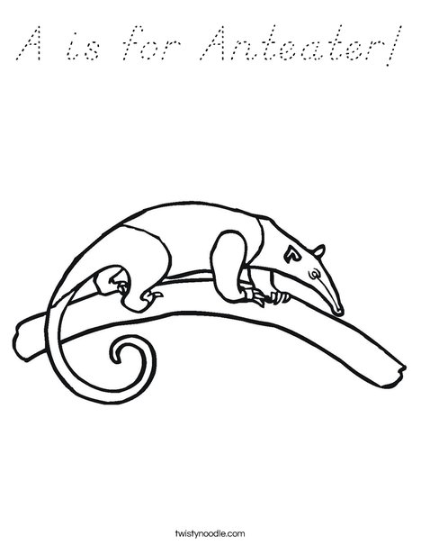 Anteater on a Branch Coloring Page