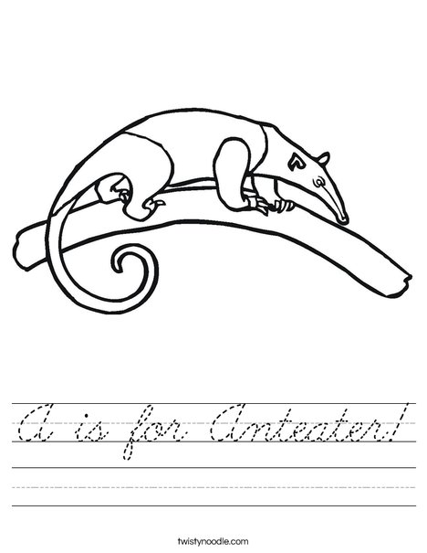 Anteater on a Branch Worksheet