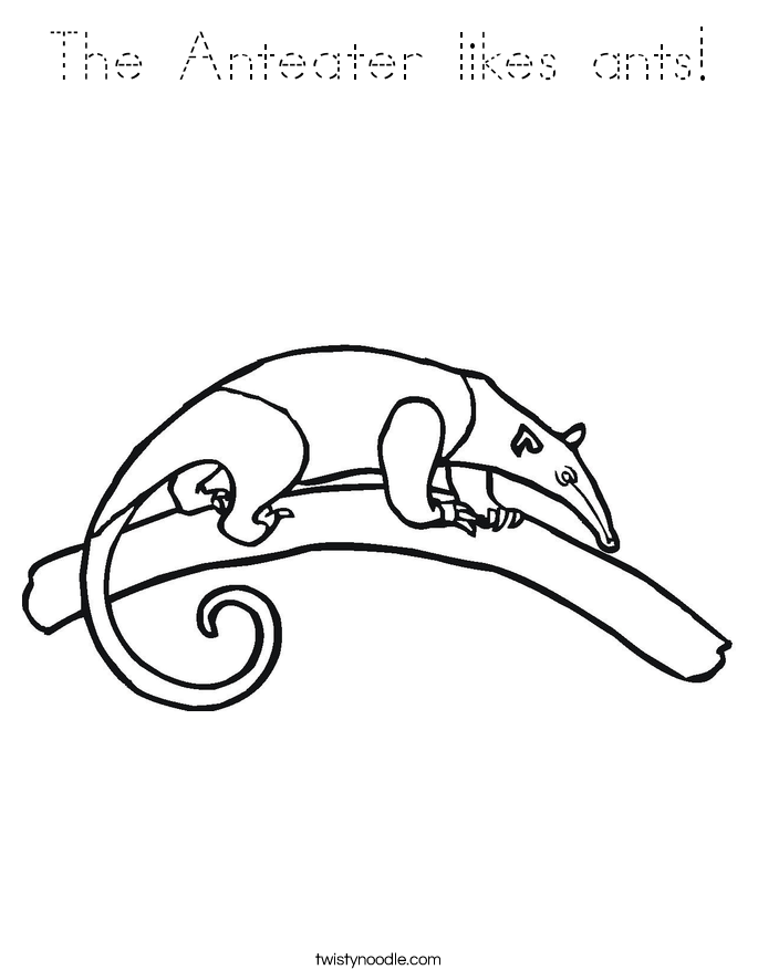 The Anteater likes ants! Coloring Page