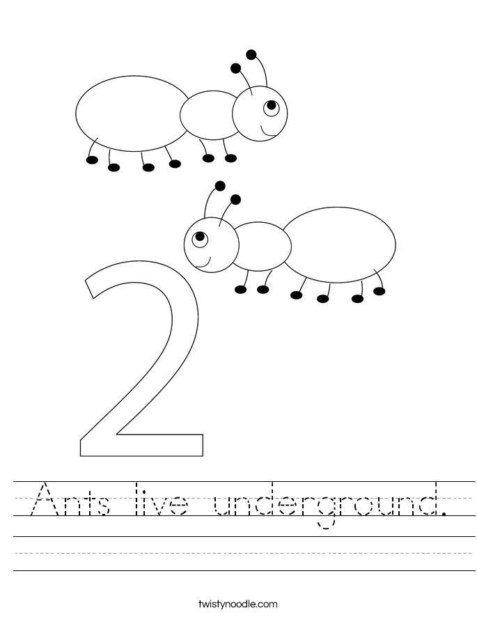 Ants live underground. Worksheet