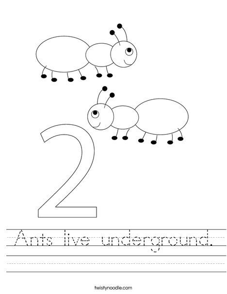 Two Ants Worksheet