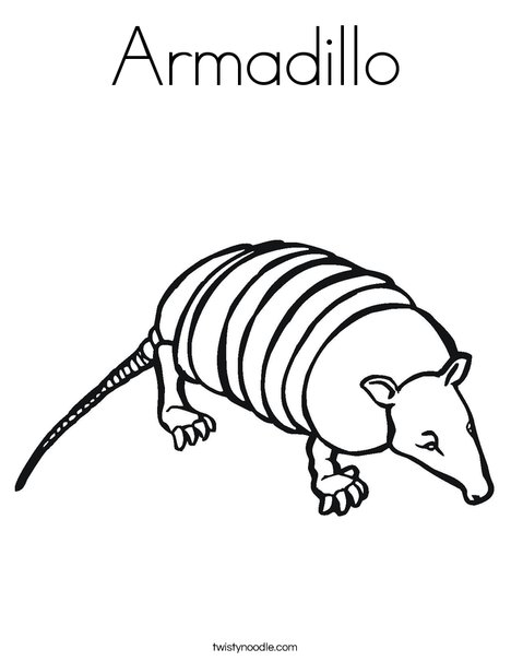 armadillo coloring page twisty noodle